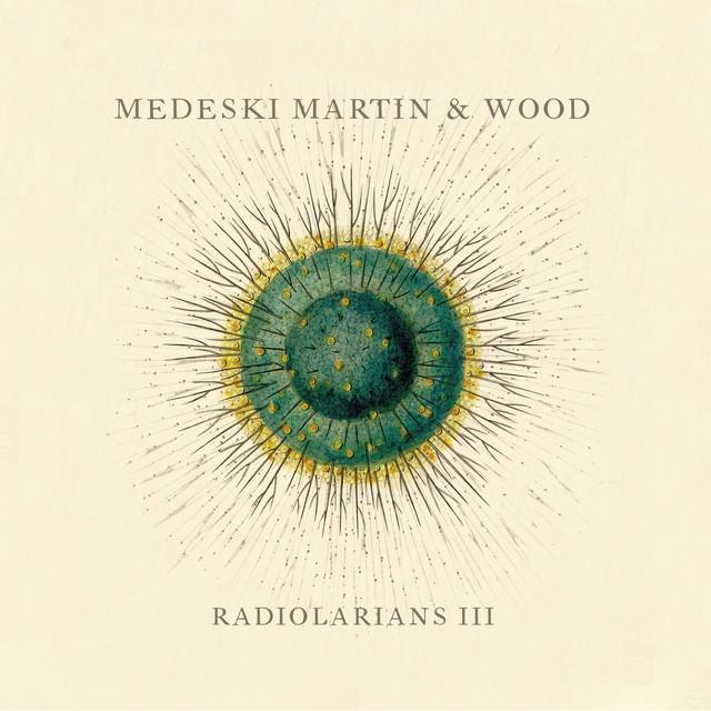 Radiolarians III
