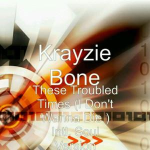 These Troubled Times (I Don't Wanna Die) [International Soul Version] [feat. Ne-Yo & Ahmed Soultan]