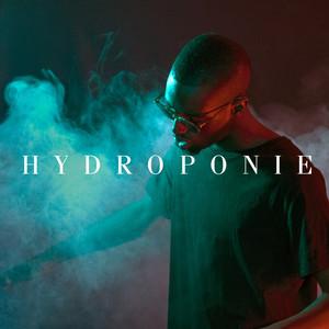 Hydroponie