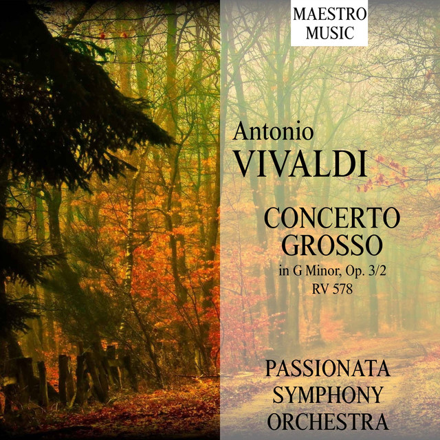 Vivaldi: Concerto Grosso In G Minor, Op. 3/2, RV 578