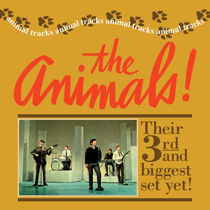 Animal Tracks - Animals