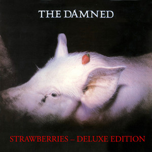 The Damned The Dog cover
