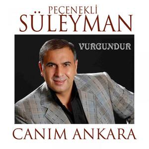 Canım Ankara (Vurgundur) Albümü