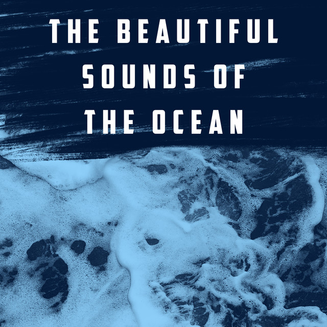 The Beautiful Sounds Of The Ocean