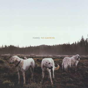 The Albatross - Foxing