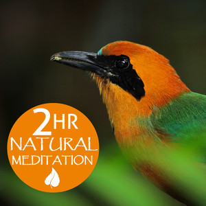 Earth Day 2 Hour Natural Meditation: Relaxing Music for Meditation & Yoga Albumcover