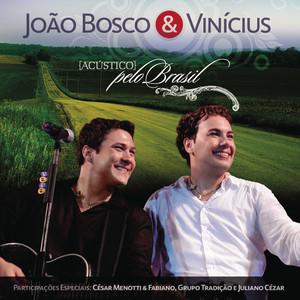 João Bosco e Vinícius ao vivo Albumcover