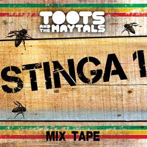 Stinga 1 album