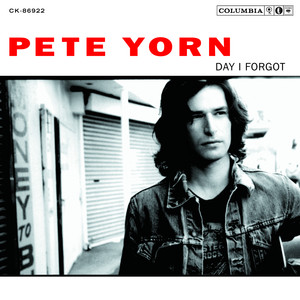 Day I Forgot - Pete Yorn