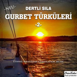 Gurbet Türküleri, Vol. 2 (Dertli Sıla) Albümü