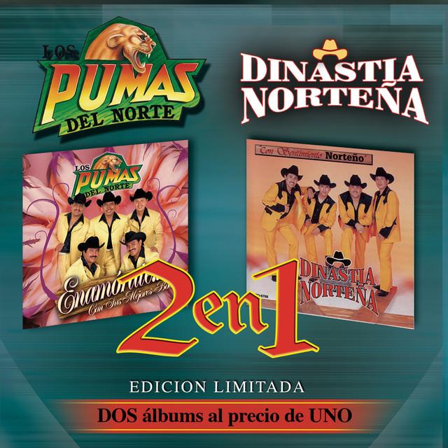 Pedacito De Sol Dinastia Nortena A Song By Los Pumas Del Norte On