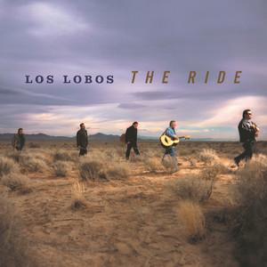 Los Lobos Rita cover