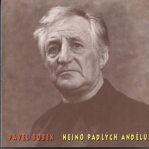 Pavel Bobek - Hejno padlych andelu