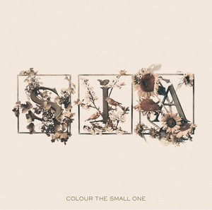 Colour The Small One Albumcover