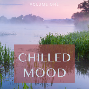 Chilled Mood, Vol. 1 (Finest Selection Of Electronic Smoth Jazz)