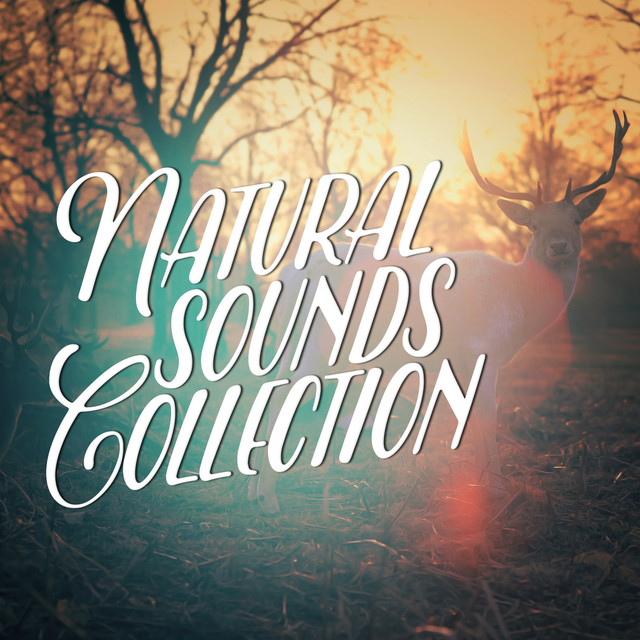 Natural Sounds Collection Albumcover