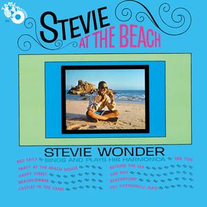 Stevie at the Beach album