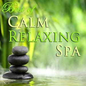 Calm Relaxing Spa Albumcover