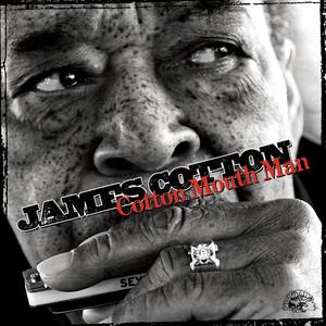 Cotton Mouth Man album