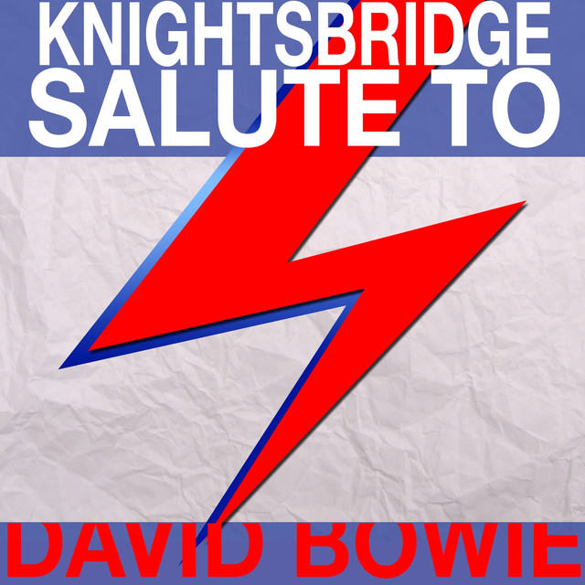 Salute to David Bowie Albumcover