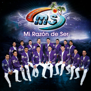 Mi Razón De Ser Albumcover
