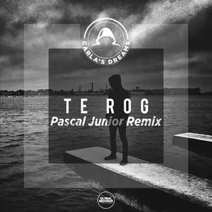 Te Rog (Pascal Junior Remix) Albümü
