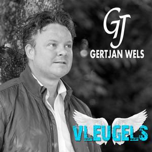 Gertjan Wels