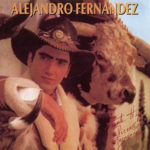 ALEJANDRO FERNANDEZ Albumcover