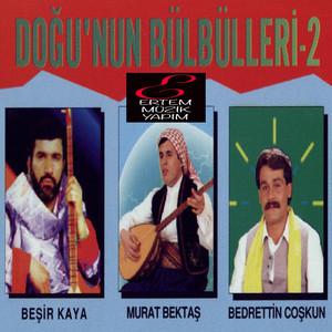 Doğu'nun Bülbülleri, Vol. 2 Albümü