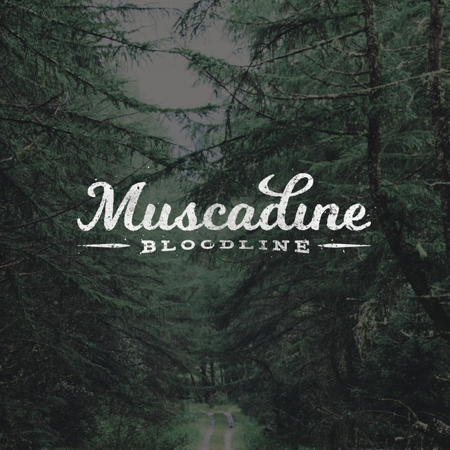 Album cover for Muscadine Bloodline by Muscadine Bloodline