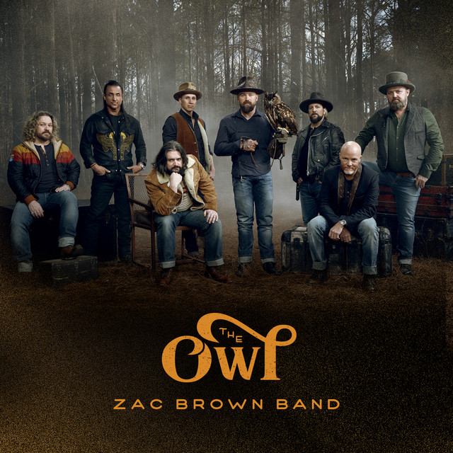 Album cover for The Owl by Zac Brown Band