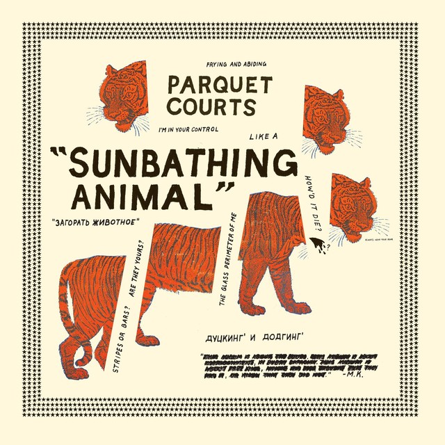 Album cover for Sunbathing Animal by Parquet Courts
