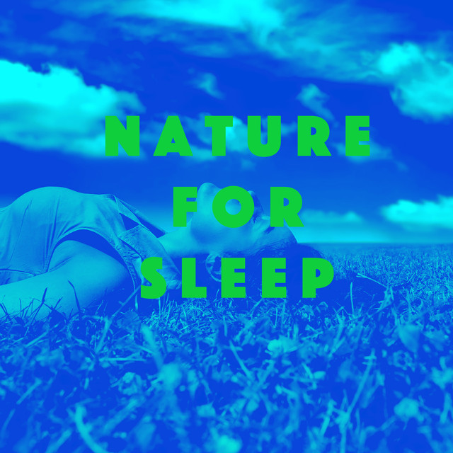 Album cover for Nature for Sleep by Nature Sounds, Thunderstorm Sleep, Nature Sound Series