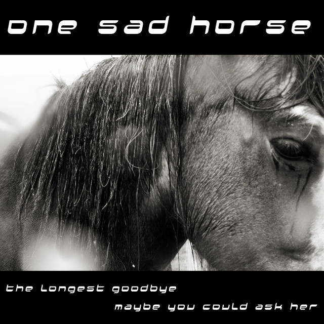 The Longest Goodbye by One Sad Horse on Spotify