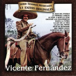 Tesoros Musicales Albumcover