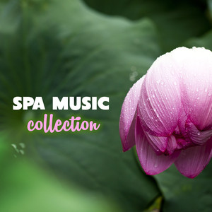 Best 30 Relaxing Spa Music Collection Albumcover