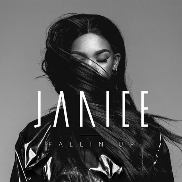 Skivomslag för Janice: Fallin' Up