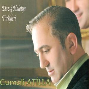 Elazığ Malatya Türküleri Albümü