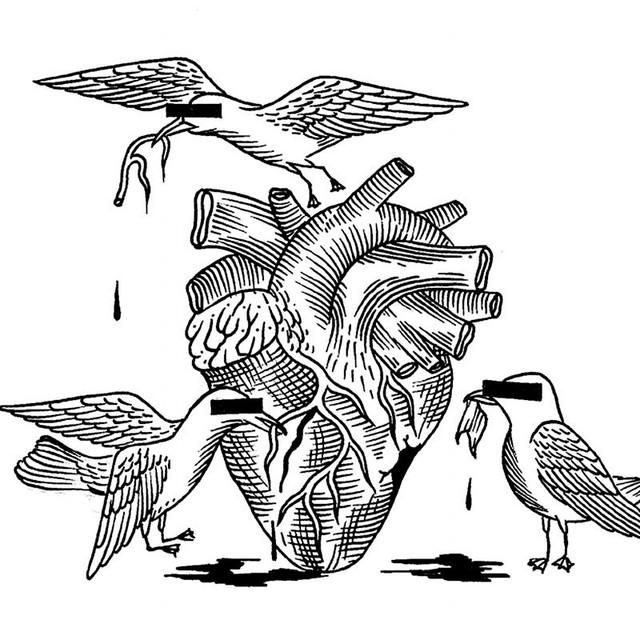 Blind Seagull