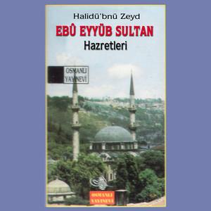 Halidü'bnü Zeyd Ebû Eyyüb Sultan Hazretleri Albümü