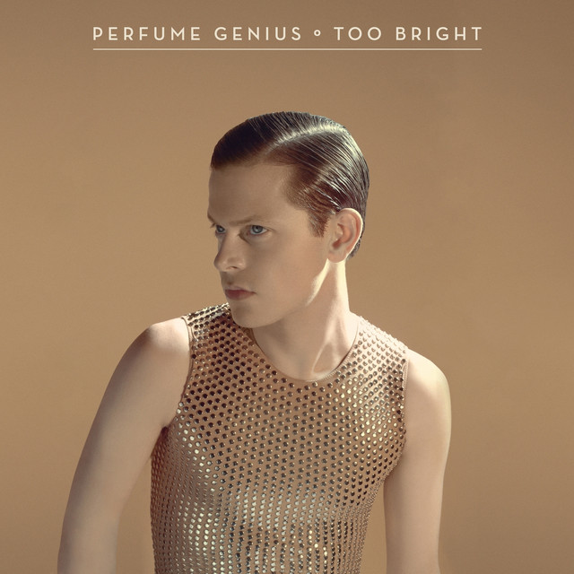 Artwork for Too Bright by Perfume Genius