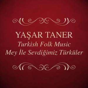 Yaşar Taner