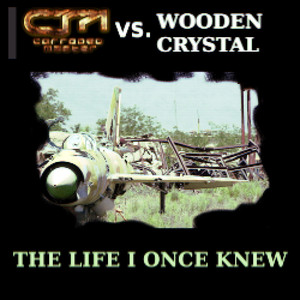 Wooden Crystal vs. Corroded Master