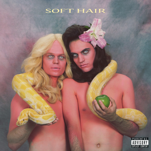 Album cover for Soft Hair by Soft Hair