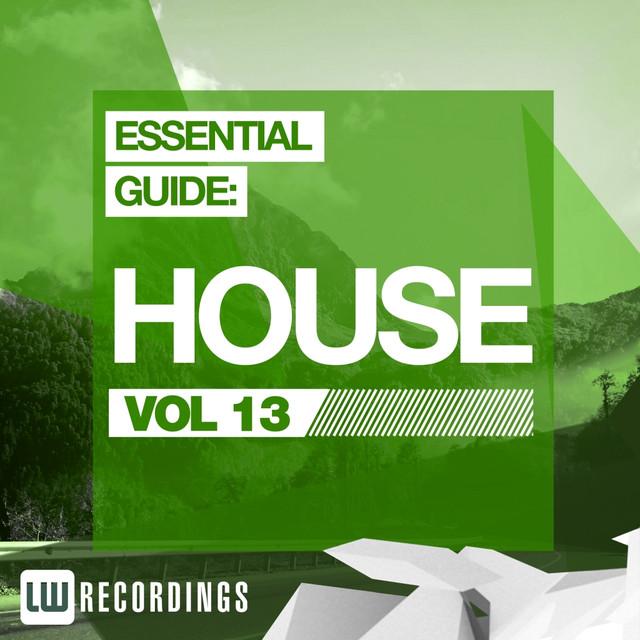 Essential Guide: House, Vol. 13 Albumcover