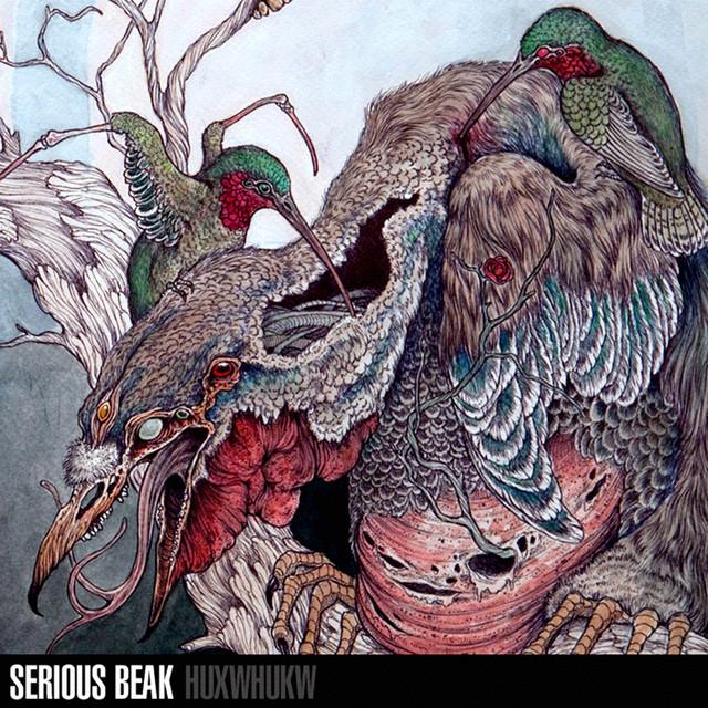 Serious Beak - Huxwhukw