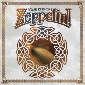 Some Kind of Zeppelin! album