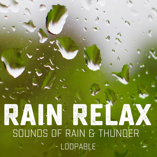 Relaxing Forest Rain Summer (Loopable with No Fade), a song by Rain