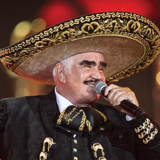 Vicente Fernández Quien Será cover