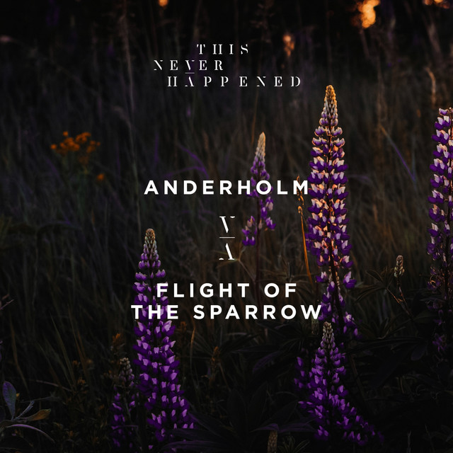 Album cover for Flight of the Sparrow by Anderholm